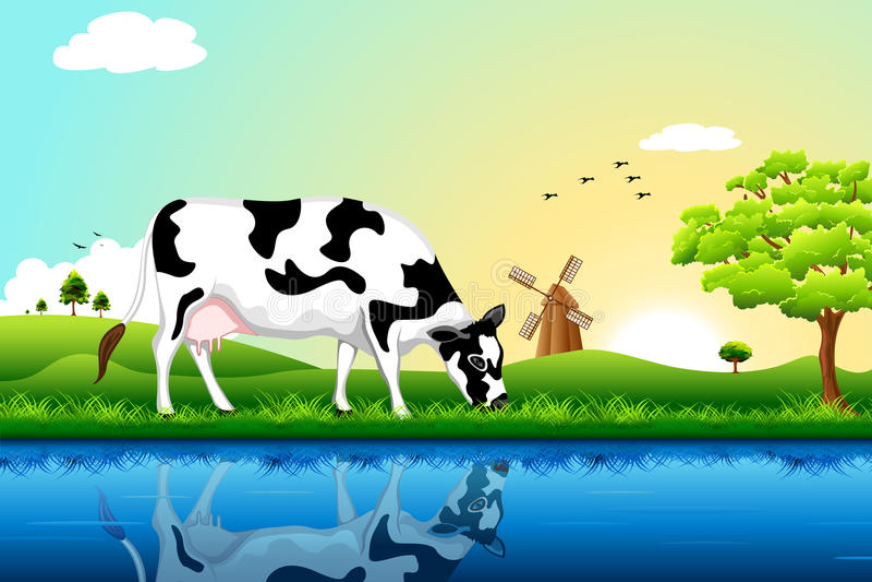 krowy pasanie royalty ilustracja
