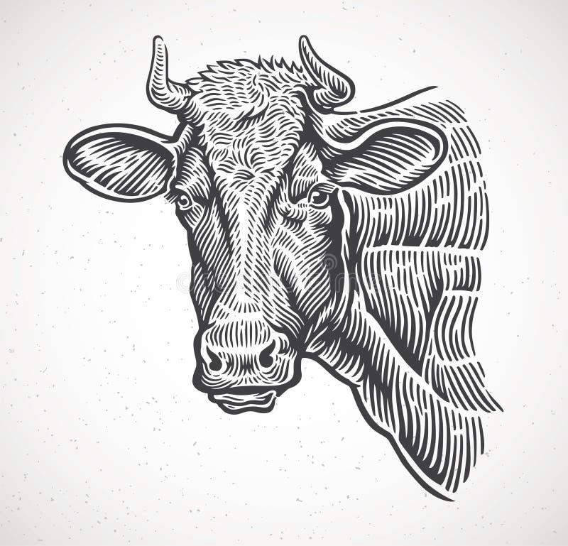 Krowy przewodzą, w grafika stylu ilustracji