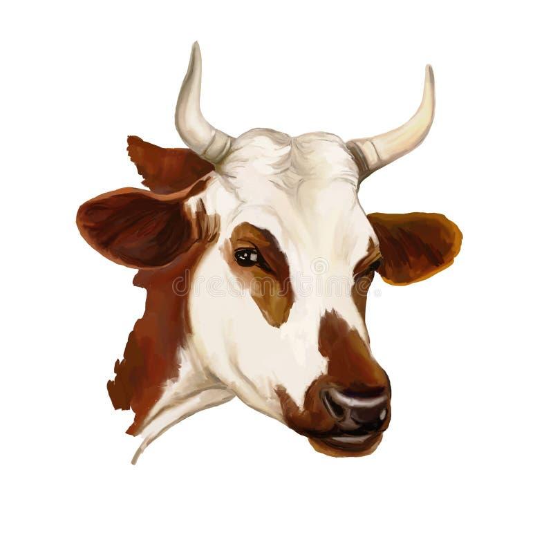 Krowy wektorowa ilustracja malująca akwarela royalty ilustracja