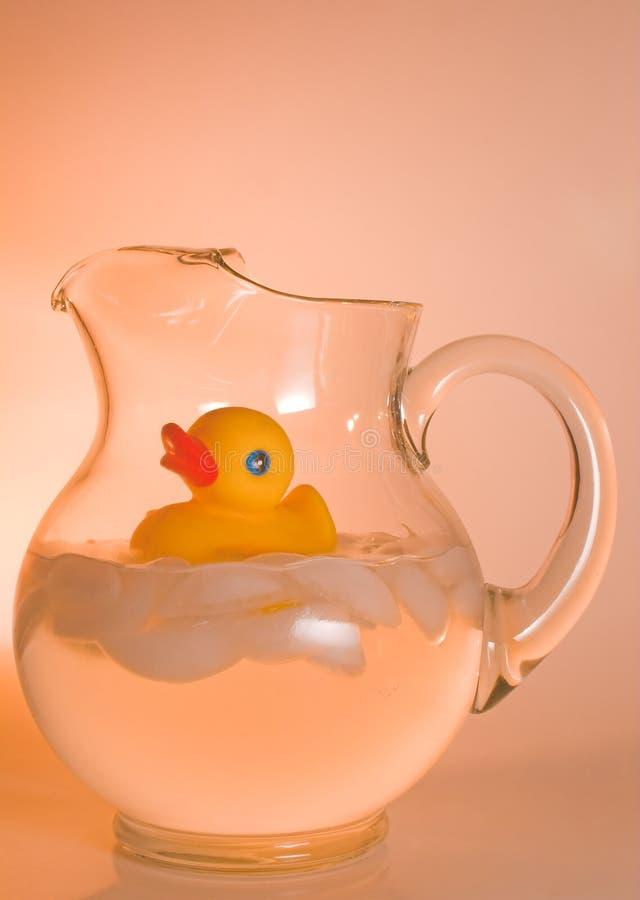 Krug der Ente stockbild