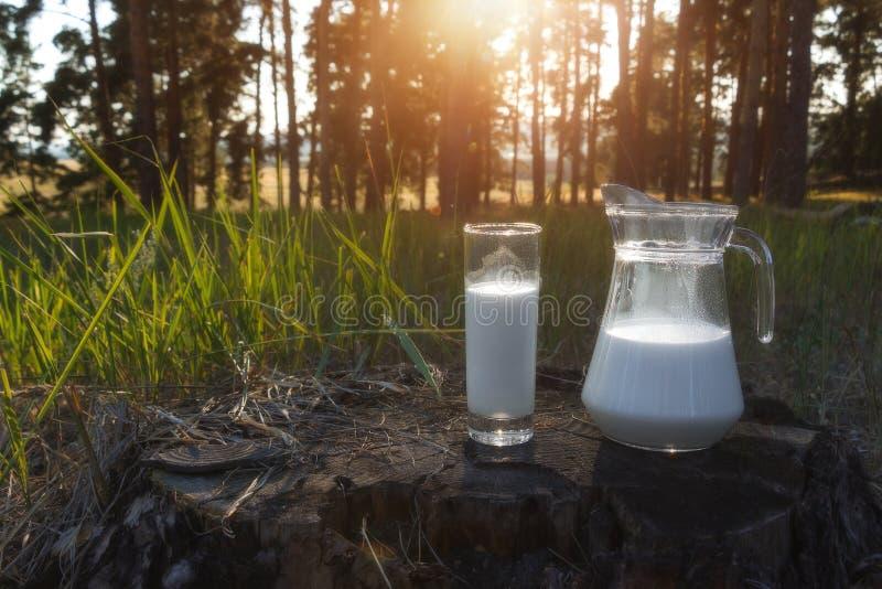 Krug und Glas mit Milch auf dem Gras gegen einen Hintergrund von malerischen grünen Wiesen mit Blumen am Sonnenuntergangsommertag lizenzfreies stockbild