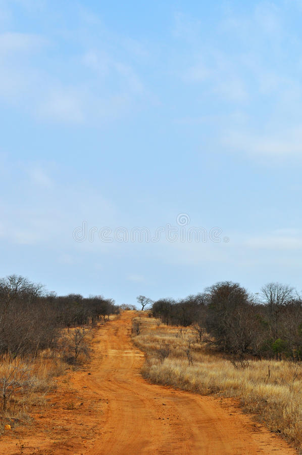 Kruger nationalpark-, Limpopo och Mpumalanga landskap, Sydafrika arkivbilder