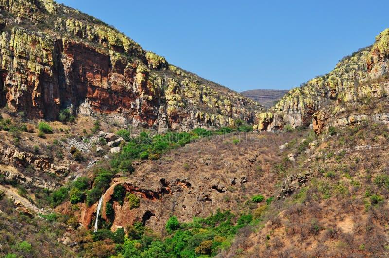 Kruger nationalpark-, Limpopo och Mpumalanga landskap, Sydafrika royaltyfri foto