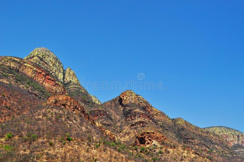 Kruger nationalpark-, Limpopo och Mpumalanga landskap, Sydafrika fotografering för bildbyråer
