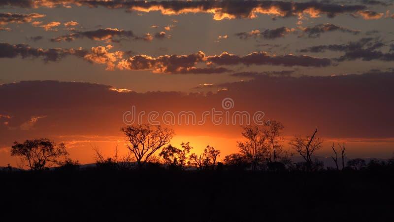 Kruger solnedgång arkivfoto
