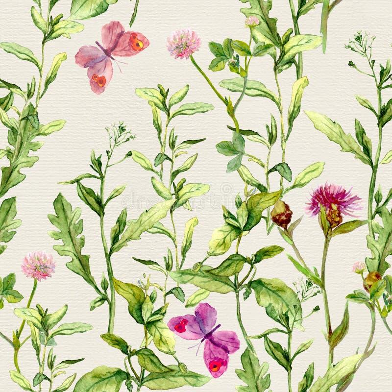 Kruiden, bloemen, vlinders, weidegras Herhaald bloemenpatroon watercolour royalty-vrije illustratie