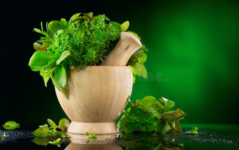 kruiden Bos van Verse groene organische aromatische kruidbladeren in houten mortier met stamper over donkere achtergrond stock foto