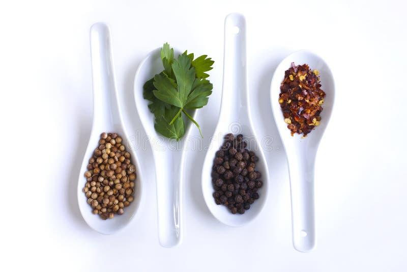 Kruiden in caterings dienende lepels royalty-vrije stock afbeelding