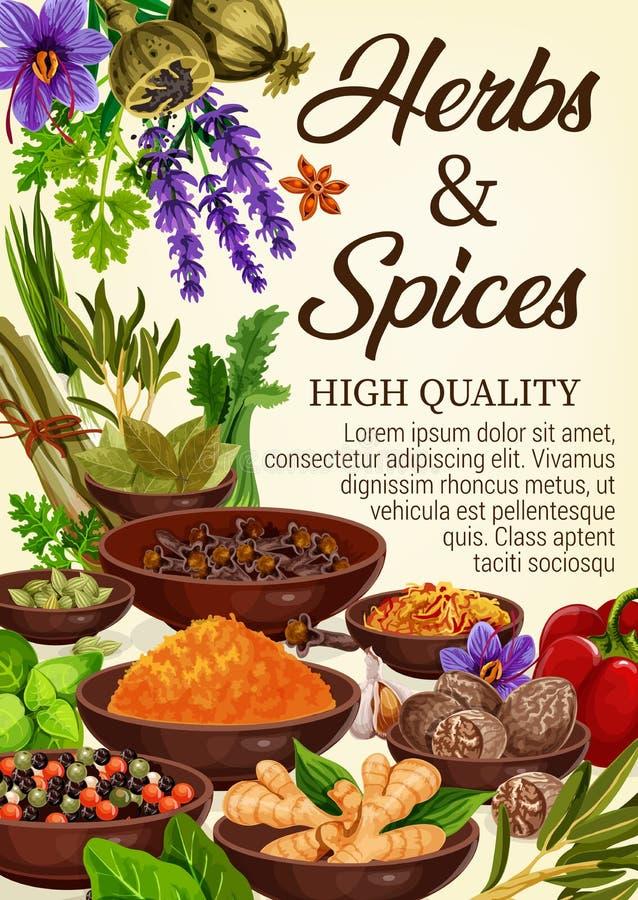 Kruiden, culinaire kruiden, specerijen en kruiden vector illustratie