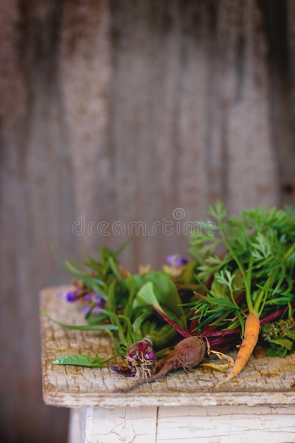 Kruiden en groenten royalty-vrije stock foto