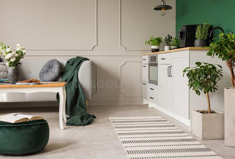 Kruiden en installaties in open van de plankeuken en woonkamer binnenland met grijze kabinetten en comfortabele bank stock afbeeldingen