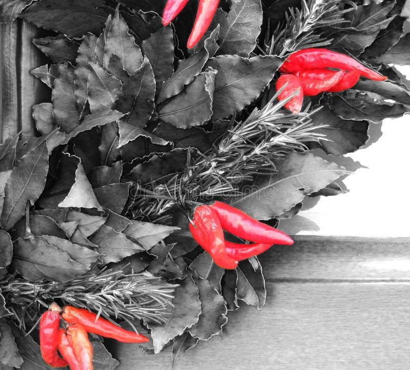 Kruiden en kruidenslinger van Spaanse peperspeper, baaibladeren en rozemarijntwijgen die wordt gemaakt stock afbeeldingen