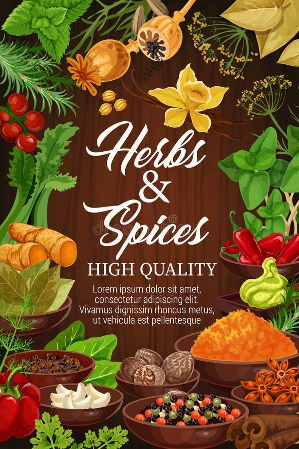 Kruiden en kruiden, organisch kruiden vector illustratie