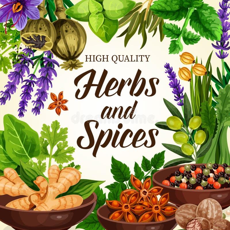 Kruiden, kruiden, kruiden en specerijenvector stock illustratie