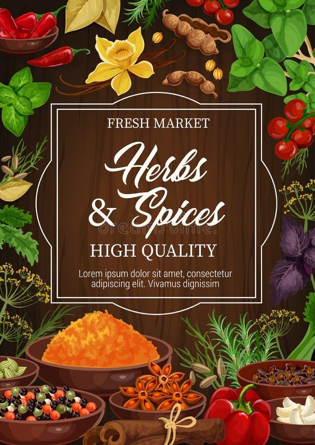 Kruiden en kruiden, vectorkruiden en specerijen stock illustratie
