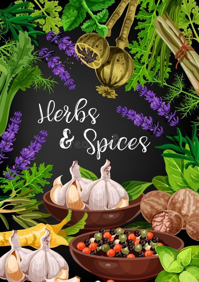 Kruiden, kruiden en voedselkruiden, vector vector illustratie