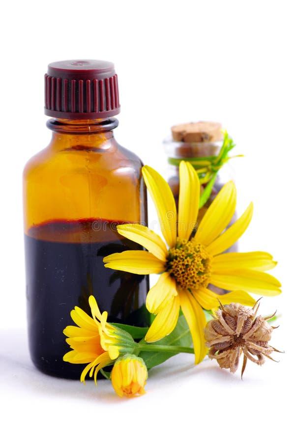Kruiden geneeskunde met kruiden stock afbeelding