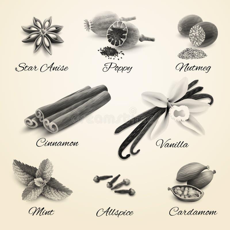 Kruiden geplaatst zwart-wit stock illustratie