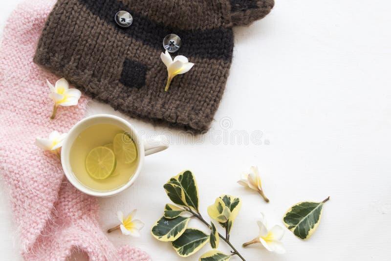 Kruiden gezonde de dranken heralth zorg van de honingscitroen voor keelpijn royalty-vrije stock afbeeldingen