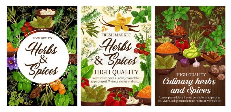 Kruiden, groene kruiden en plantaardig voedselkruiden stock illustratie