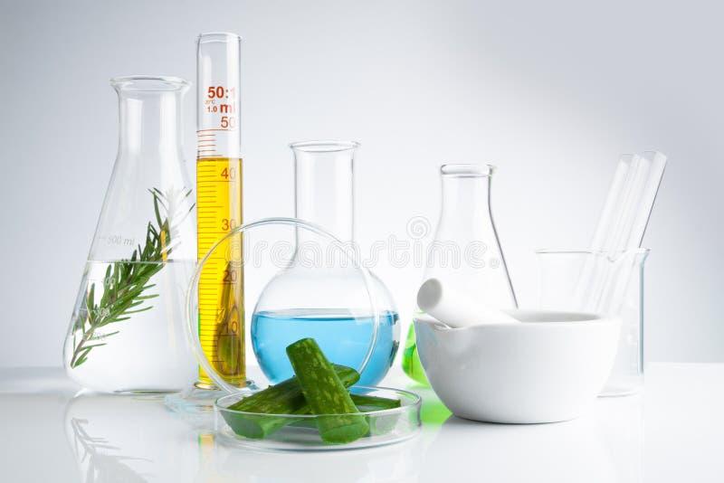 kruidengeneeskunde natuurlijk organisch en wetenschappelijk glaswerk royalty-vrije stock fotografie