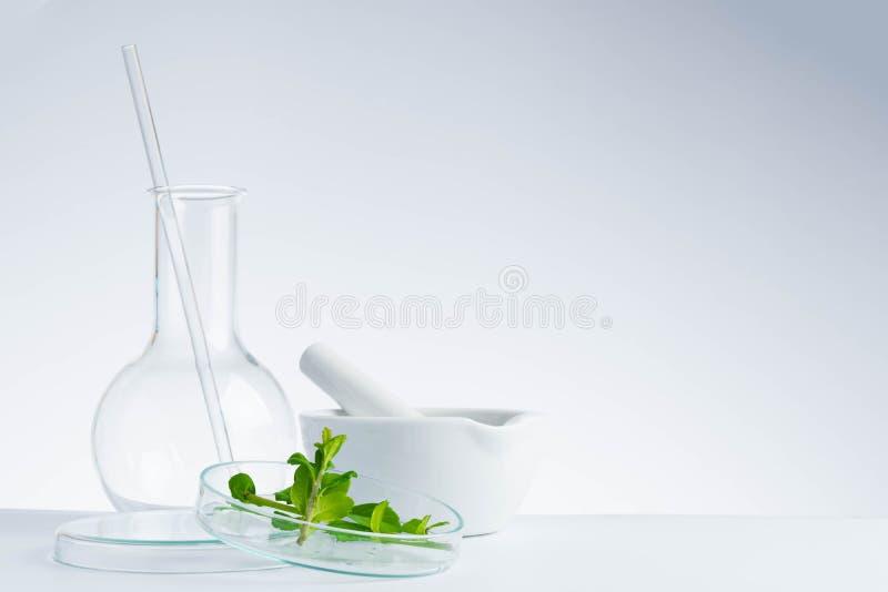 kruidengeneeskunde natuurlijk organisch en wetenschappelijk glaswerk royalty-vrije stock foto's