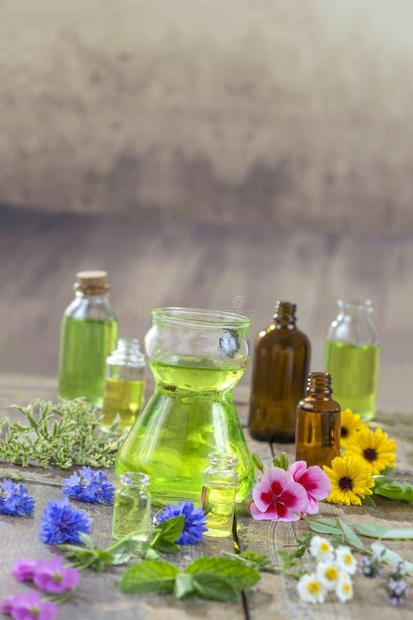 Kruidentherapie en aromathrapy concept: alternatieve behandeling met verse geneeskrachtige kruiden en bloemen op houten stock foto's