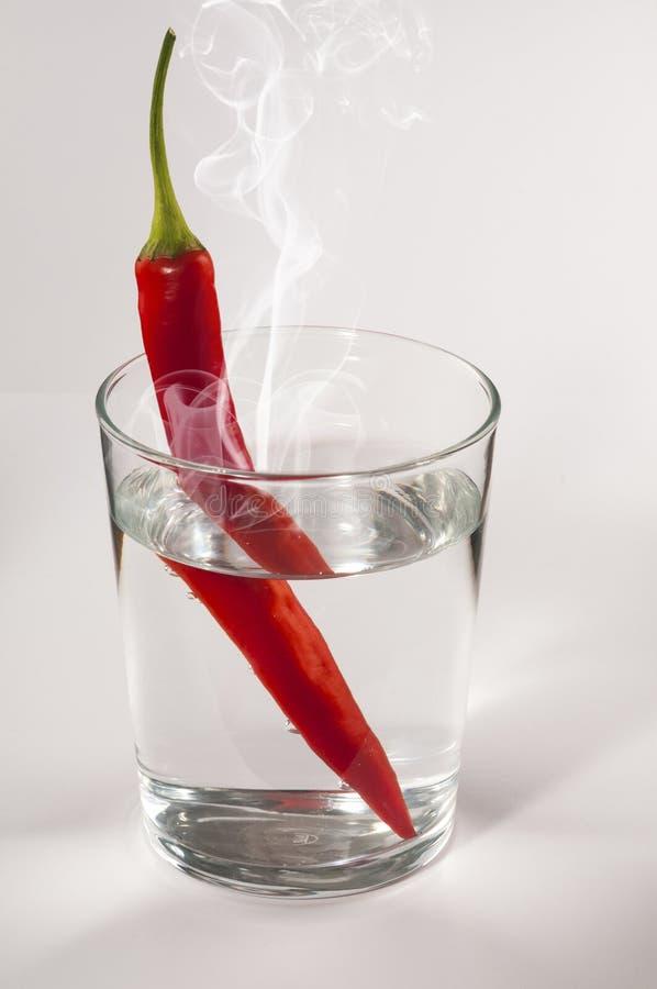 Kruidige rode Spaanse pepers stock foto's