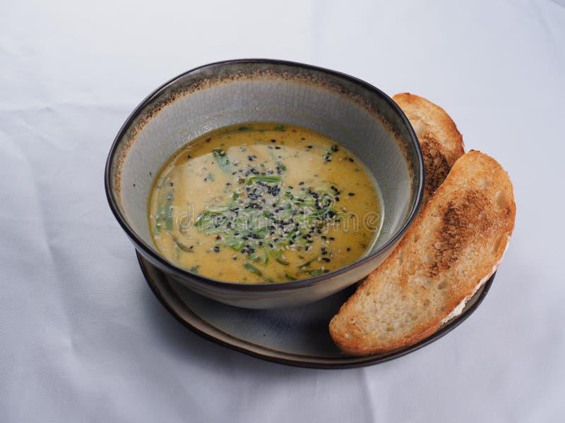 Kruidige soep met kokosmelk stock fotografie