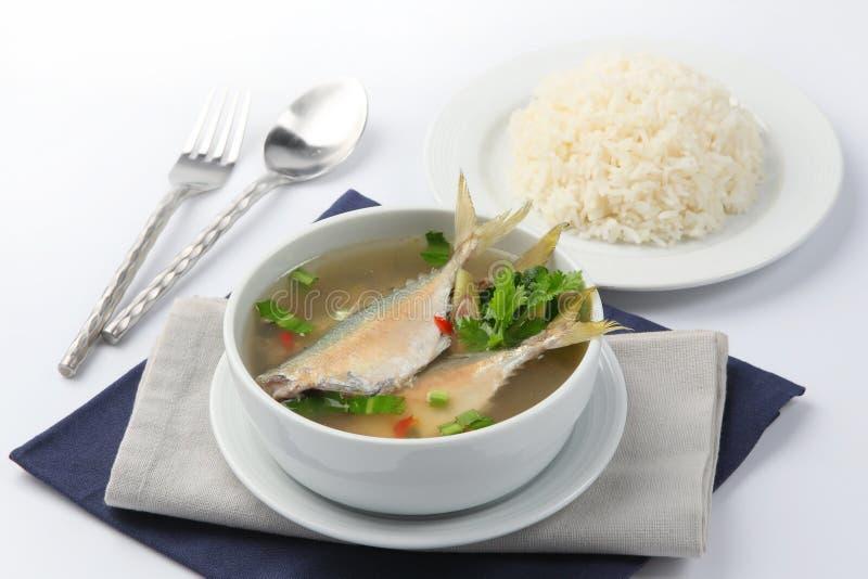 Kruidige soepmakreel met rijst, Thais voedsel royalty-vrije stock foto's