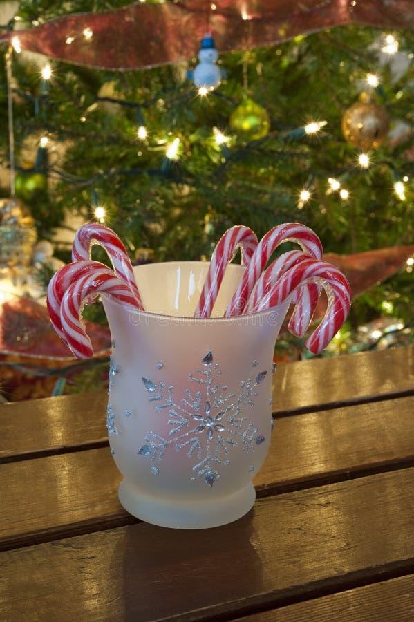 Kruik van Suikergoedriet met Kerstboom royalty-vrije stock fotografie