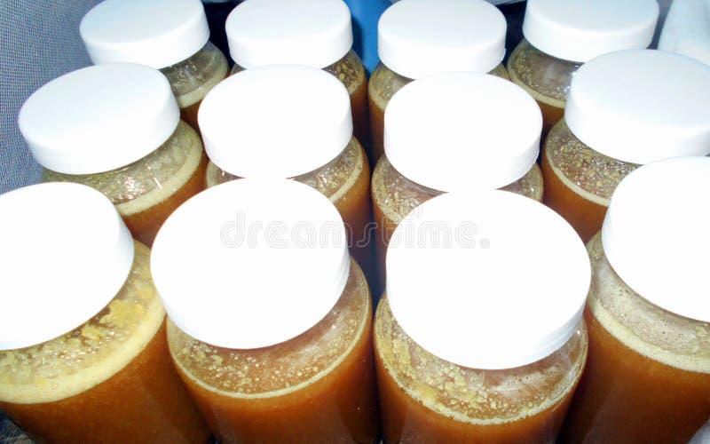 Kruiken niet gepasteuriseerde ruwe honing klaar voor etikettering stock afbeeldingen