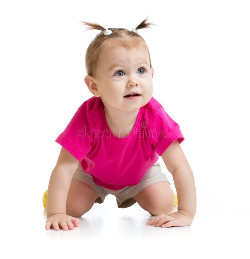 Kruipend geïsoleerd baby vooraanzicht royalty-vrije stock foto's