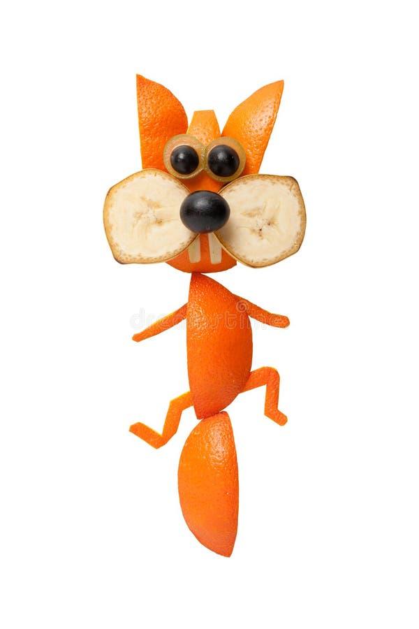 Kruipende die eekhoorn van sinaasappel wordt gemaakt stock foto's