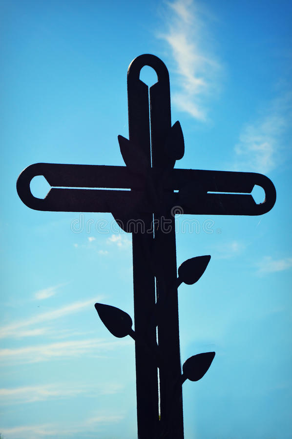 Kruis met Wijnstok stock afbeeldingen
