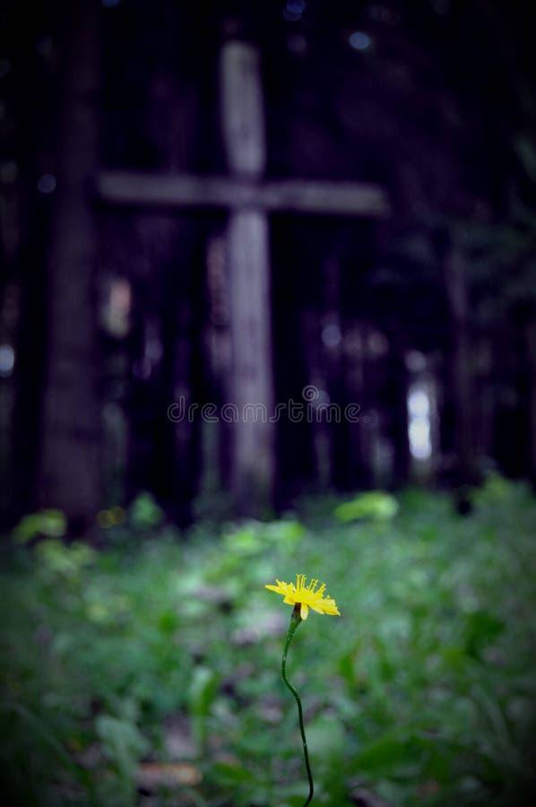 Kruis in Rusland royalty-vrije stock foto
