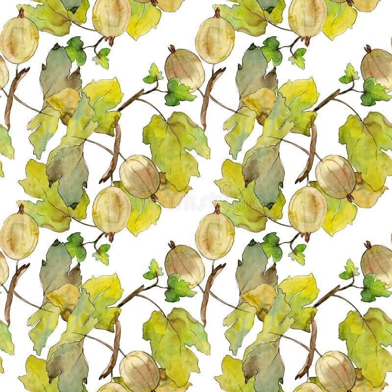 Kruisbes gezond voedsel Waterverf achtergrondillustratiereeks Naadloos patroon als achtergrond vector illustratie