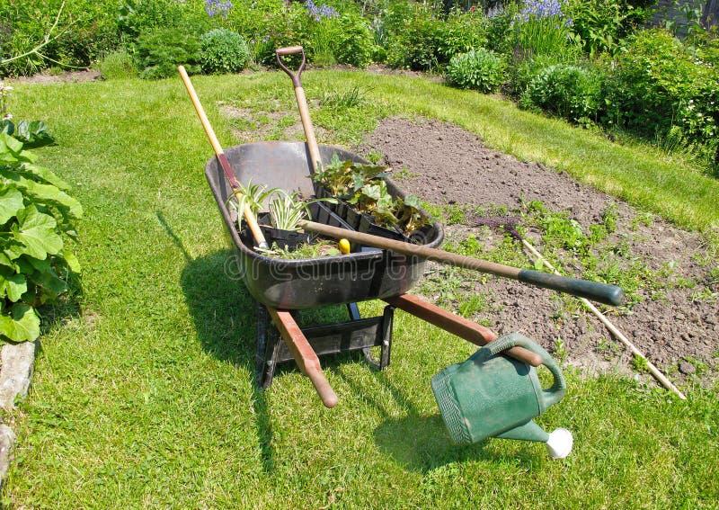 Kruiwagen in kruidachtige tuin stock fotografie
