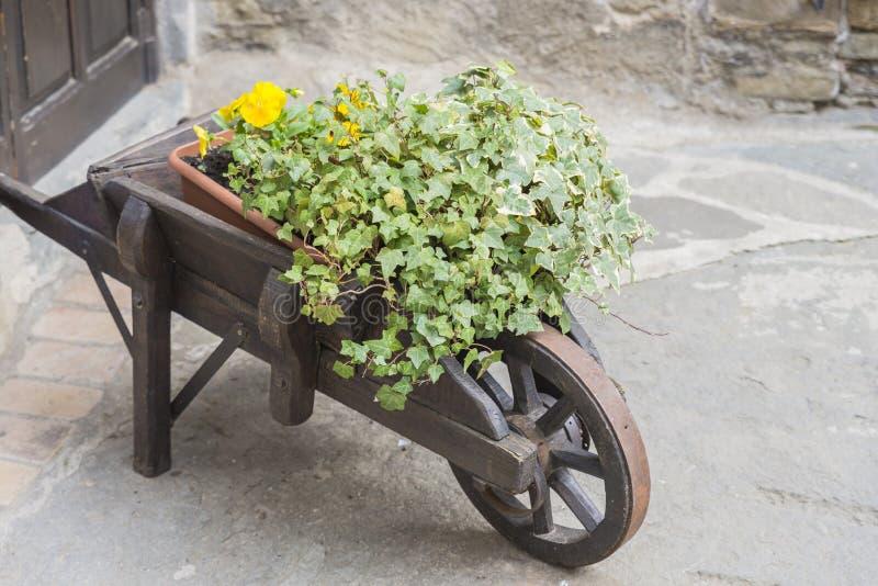 Download Kruiwagen met bloemen stock afbeelding. Afbeelding bestaande uit spring - 54080535