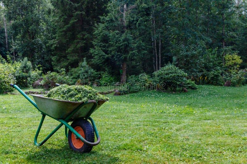 Kruiwagen met gesneden gras in de tuin E kar één wiel stock foto's