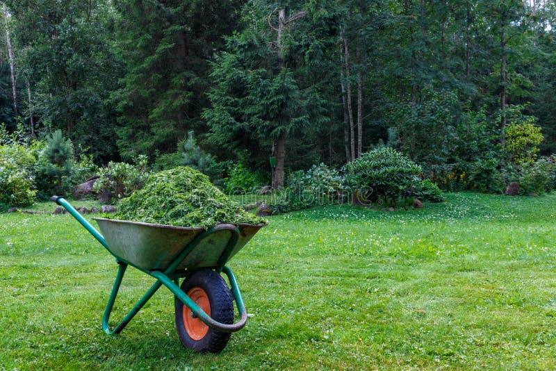 Kruiwagen met gesneden gras in de tuin E tuinkar met één wiel stock fotografie