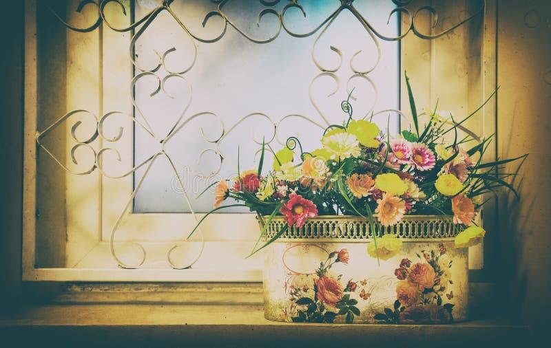 Kruka av blommor på fönstret arkivbilder