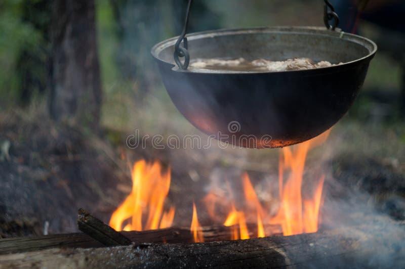 Kruka med köttragu som kokar på brasaflamman, i ett turist- läger i den lösa skogen royaltyfri foto