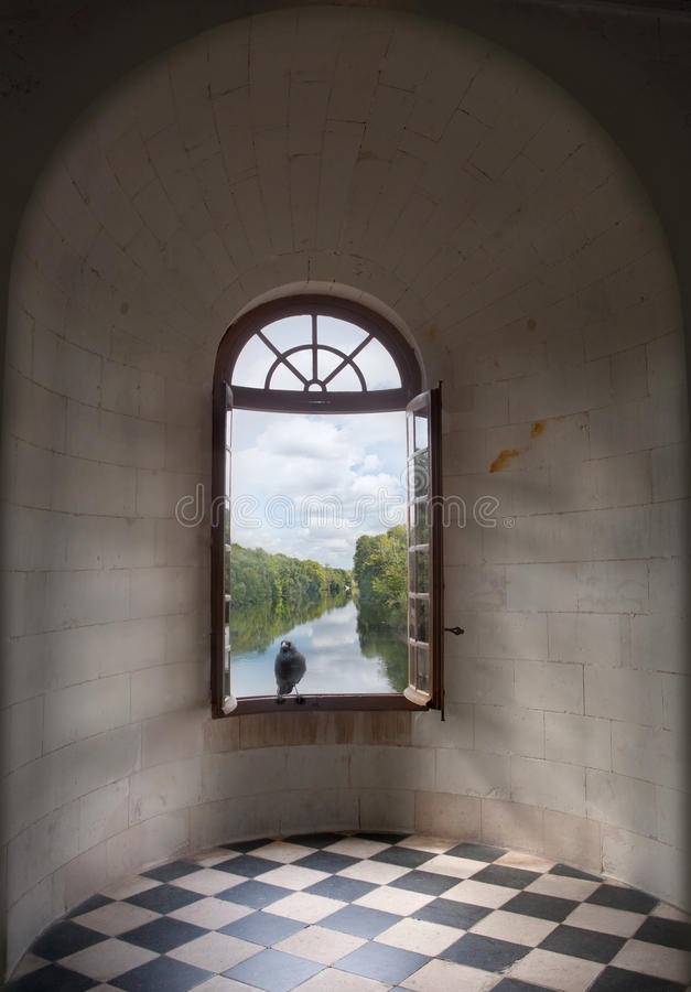 kruka okno obrazy royalty free