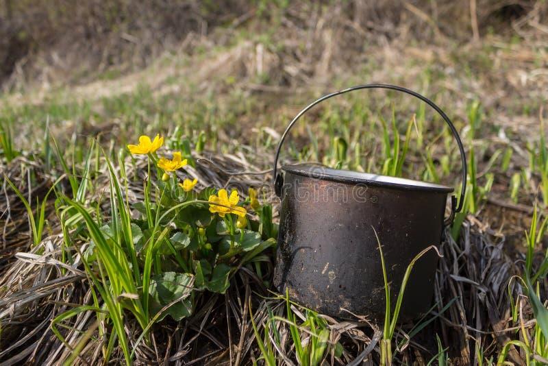 Krukan som svärtas av sot, ligger på gräset nära de gula blommorna royaltyfri foto