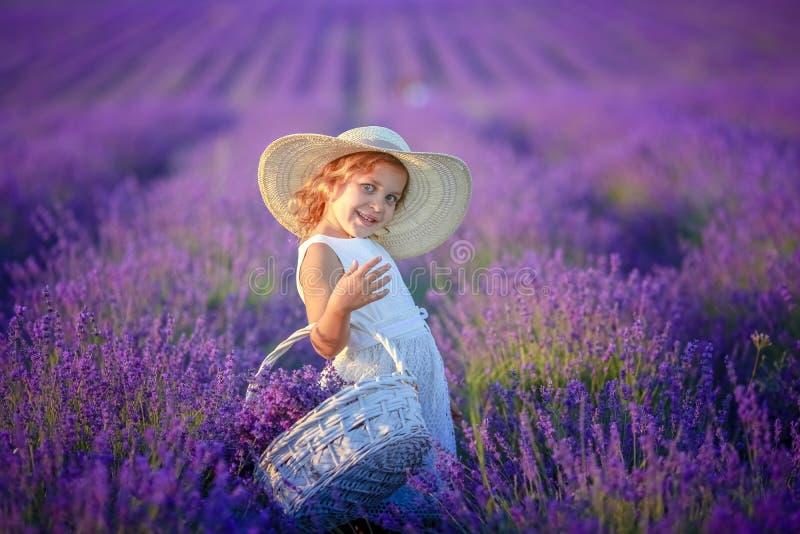Krullend meisje die zich op een lavendelgebied in witte kleding en hoed met leuk gezicht en aardig haar met lavendelboeket bevind stock foto's