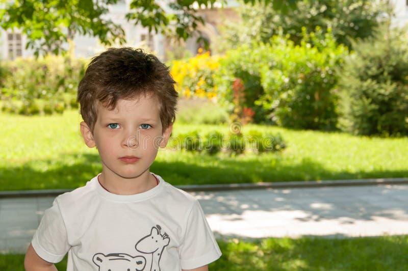 Krullend weinig jongen die dicht in de lens, in de zomer kijken stock foto's