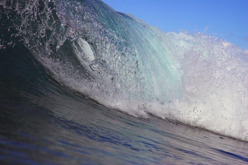 krullningswave arkivfoton