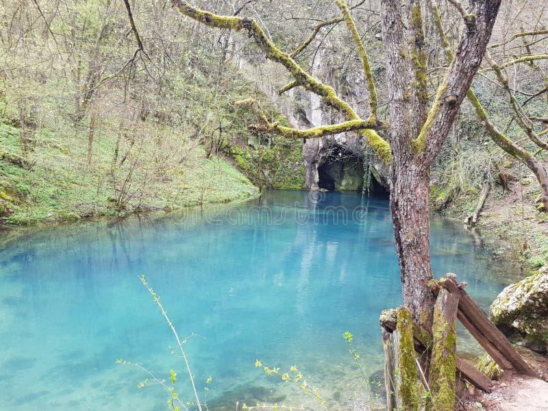 Krupaj春天,一片生态绿洲 库存照片