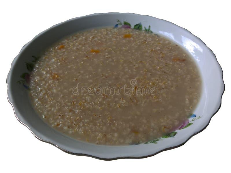 Krupnik soppa på den isolerade plattan royaltyfri foto